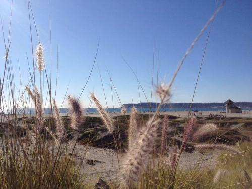 Coronado Island