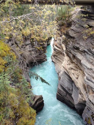 Les chutes Athabaska