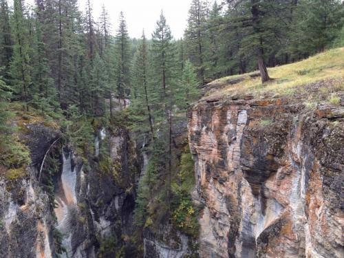 Le canyon Maligne